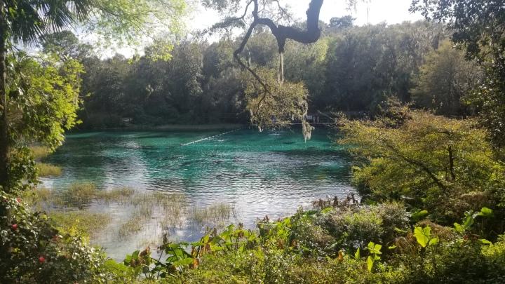 Rainbow Springs State Park{Florida}