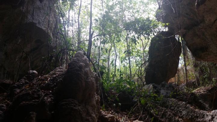 Cave of Wonders National Park {DominicanRepublic}