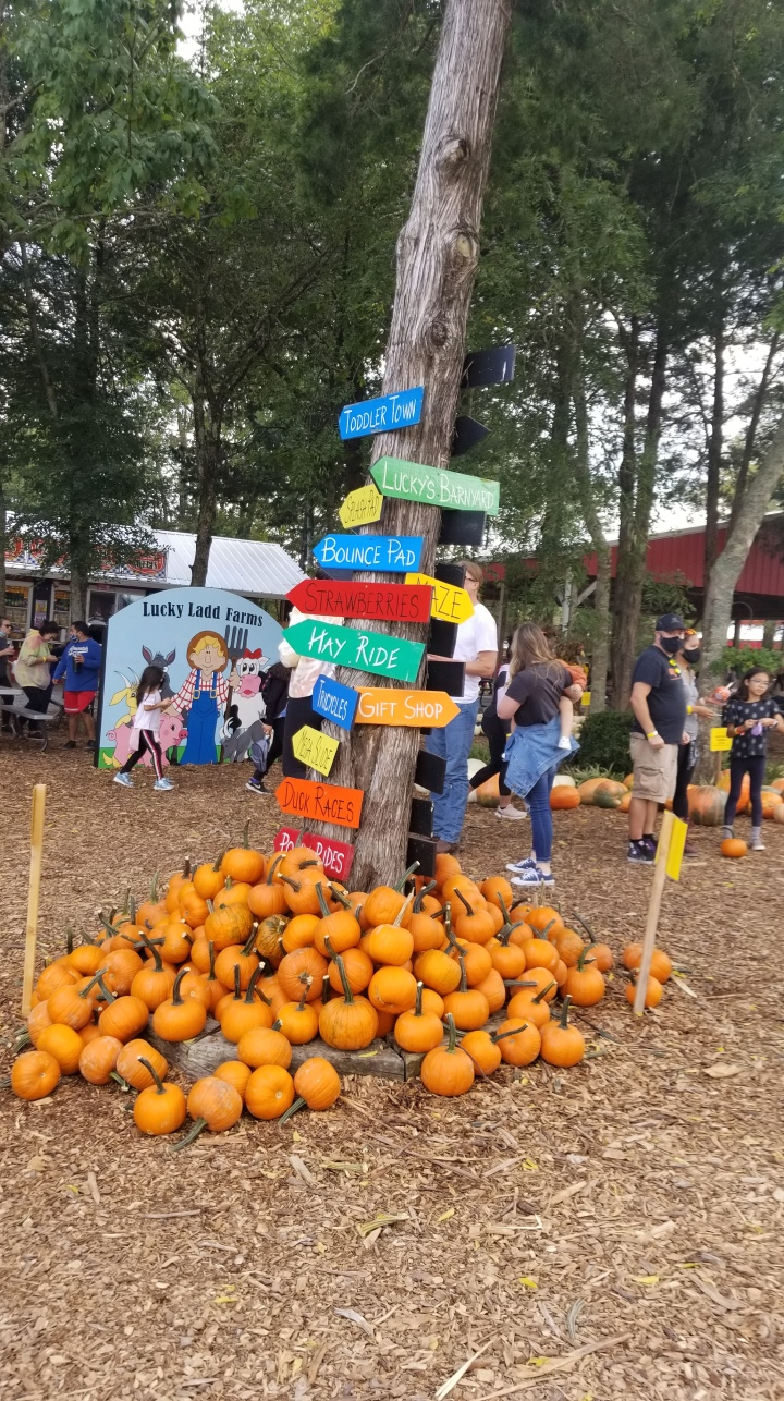 Lucky Ladd Farms{Tennessee}