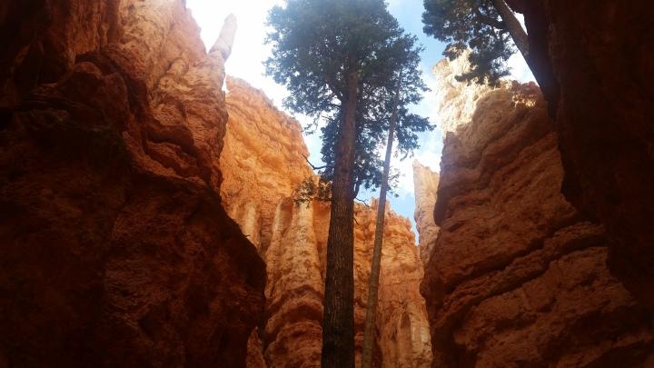 Travel Challenge- Day 1 :: Bryce Canyon National Park{Utah}
