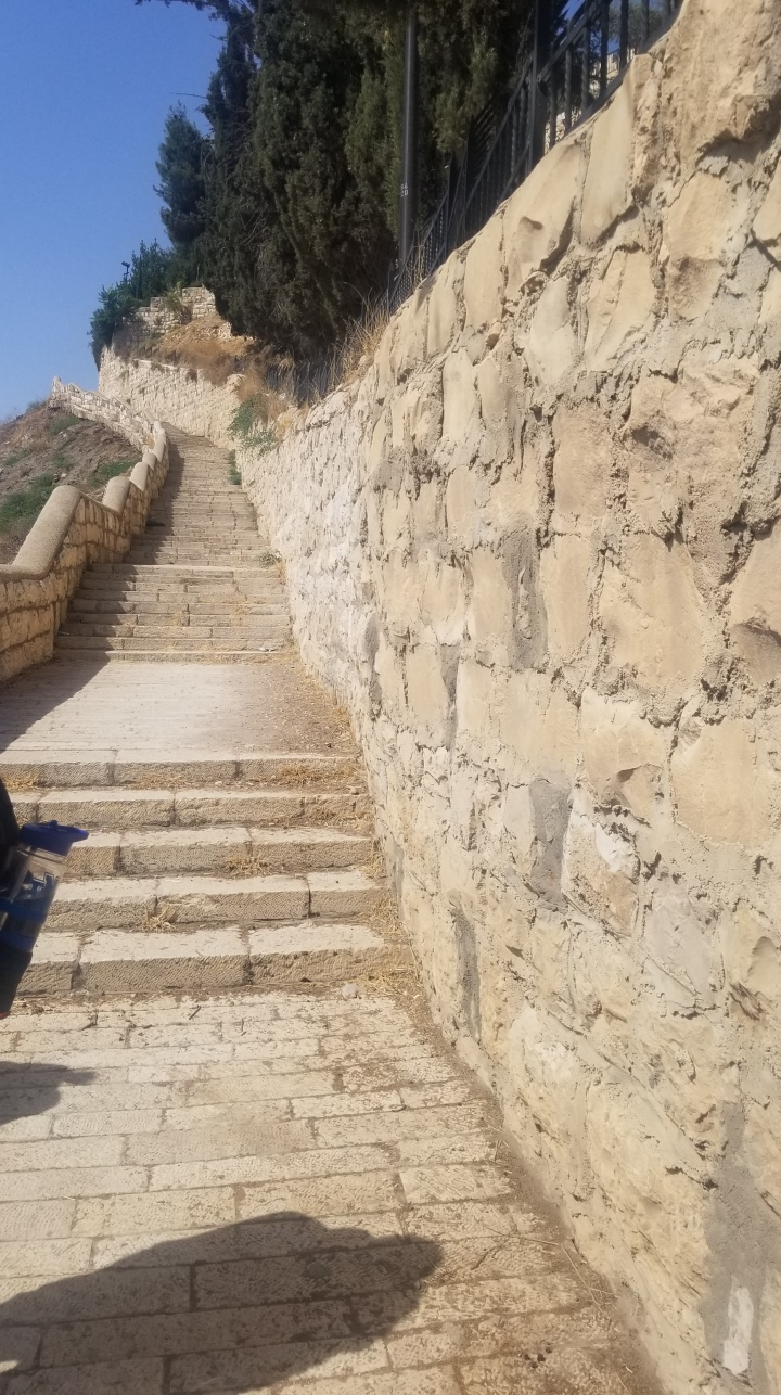 {Israel} Day 7: Mount of Olives, Chruch of All Nations, Western Wall, City of David NationalPark